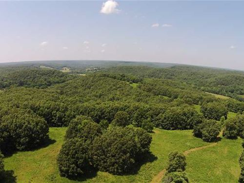 282 Acres of Great Hunting And Big : Macks Creek : Camden County : Missouri