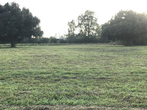 Paved Frontage Pastureland : Riegelwood : Columbus County : North Carolina