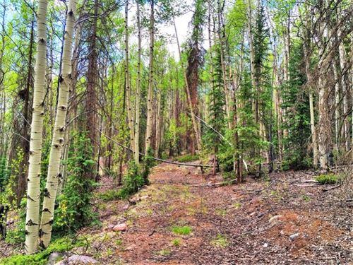 Creede Mining Claim : Creede : Mineral County : Colorado