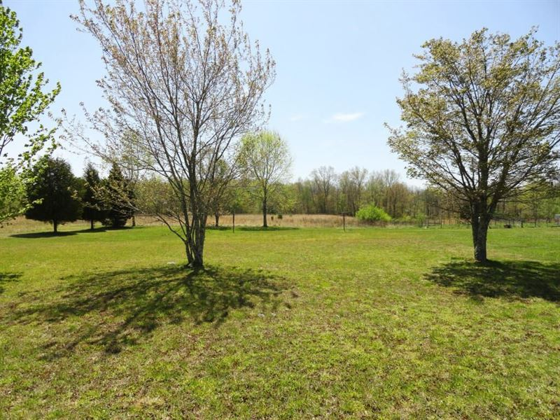 Ideal For Farm, Ranch, Or Developer : Deer Lodge : Morgan County : Tennessee