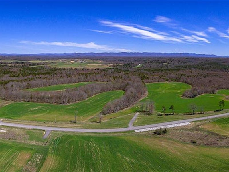 Large Acreage For Dirt Cheap : Deer Lodge : Morgan County : Tennessee