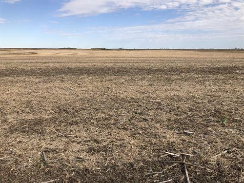 Brown County Farm Land Auction : Aberdeen : Brown County : South Dakota
