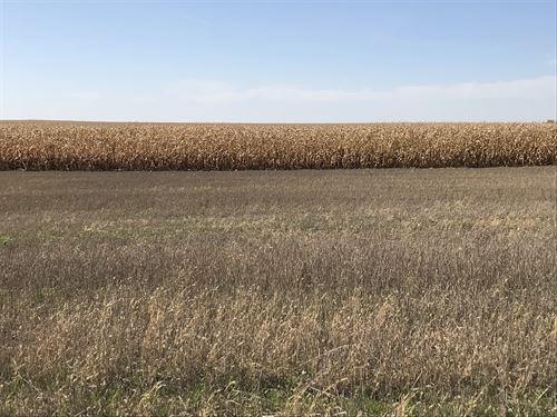 315 Acres - Brown County Farm Land : Frederick : Brown County : South Dakota