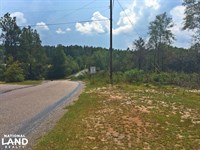 Woodland Road Puppy Creek Tract : Citronelle : Mobile County : Alabama