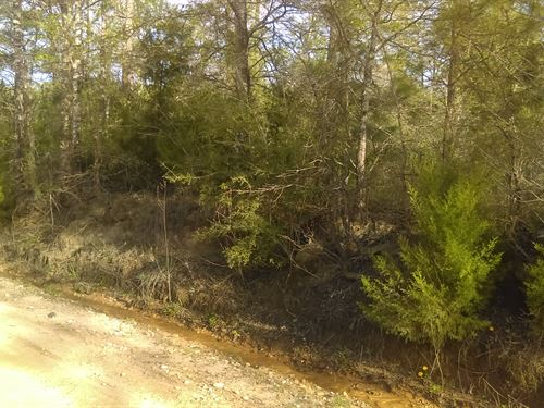Beautiful Residential 7 Acres Land : Alford : Washington County : Florida