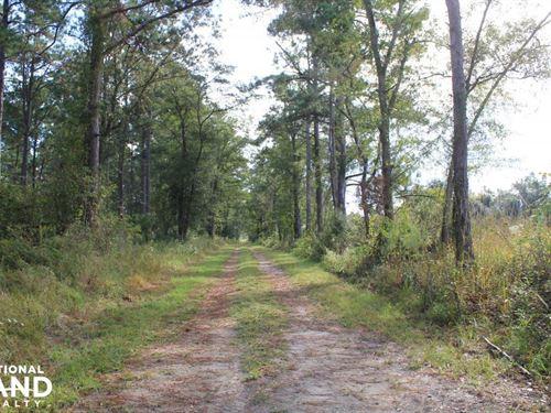 Pineville Recreation 100 Acres : Pineville : Berkeley County : South Carolina