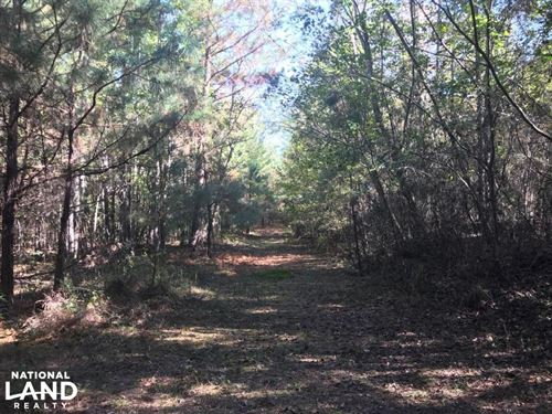 Sand Springs Road Homesite or Weeke : Fayette : Alabama