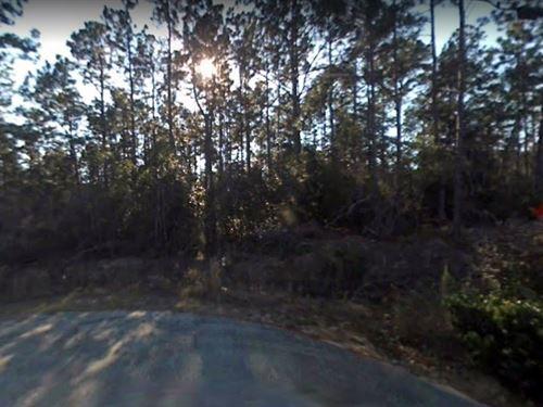 .6 Acres In Navarre, fl : Navarre : Santa Rosa County : Florida