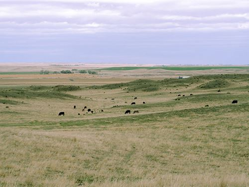 Two Mile Ranch : Lingle : Goshen County : Wyoming