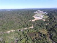 263+/- Acres - Near I-20 Pell City : Pell City : Saint Clair County : Alabama
