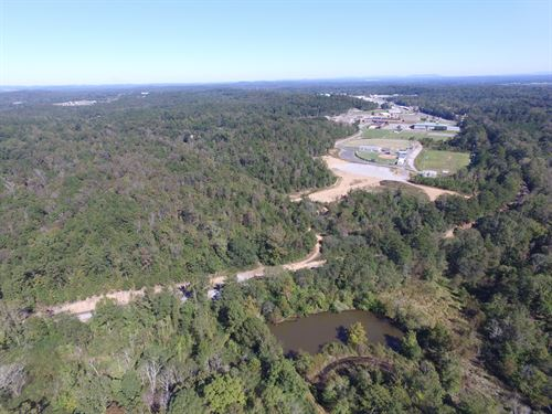263+/- Acres - Near I-20 Pell City : Pell City : Saint Clair County : Alabama