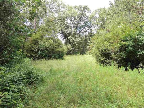 Abundant Wildlife On This 131 Acre : Poynette : Columbia County : Wisconsin