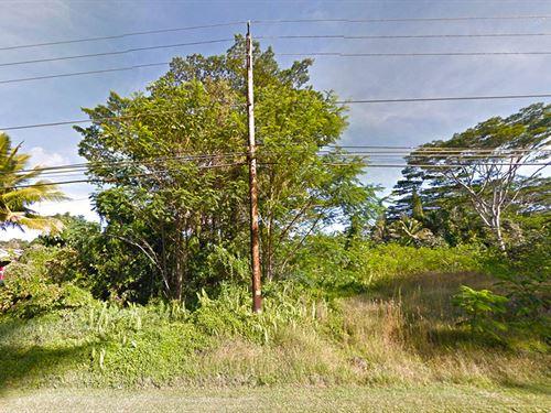 Beautiful Lot Tropical Subdivision : Pahoa : Hawaii County : Hawaii