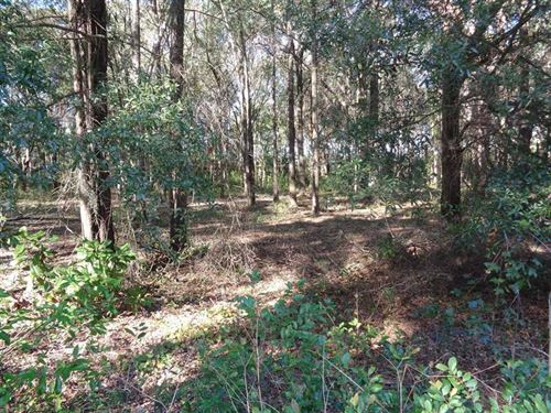 Residential Lot in Shadow Moss S/D : Eufaula : Barbour County : Alabama