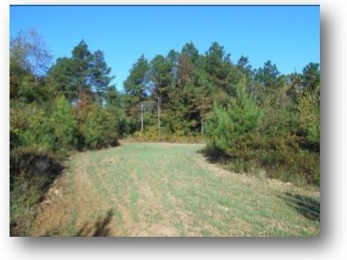 1418 Acres In Montgomery And Carrol : Carrollton : Montgomery County : Mississippi