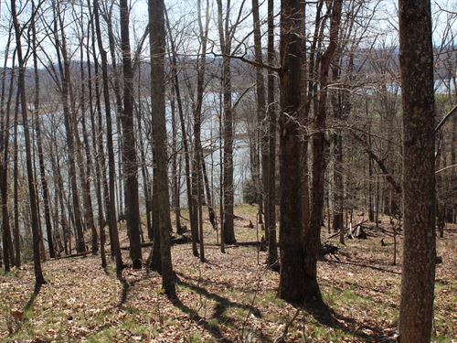 Great Cherokee Lake View Lot : Mooresburg : Hawkins County : Tennessee