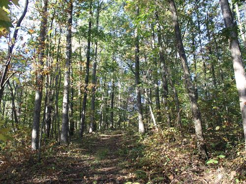 Sr 775 - 102 Acres : Gallipolis : Gallia County : Ohio