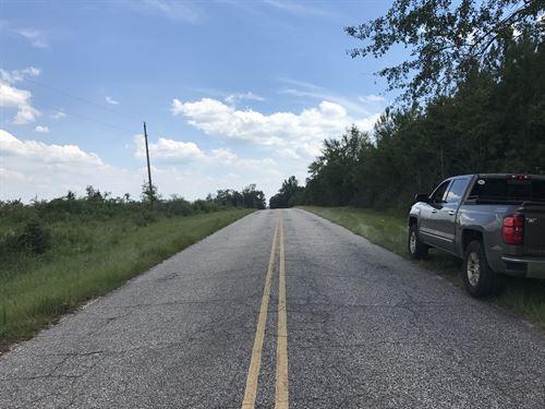 30-004Ne Meagher-Jernigan Trust : Flomaton : Escambia County : Alabama