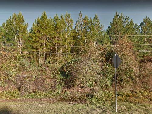5 Acres In Jacksonville, FL : Jacksonville : Duval County : Florida
