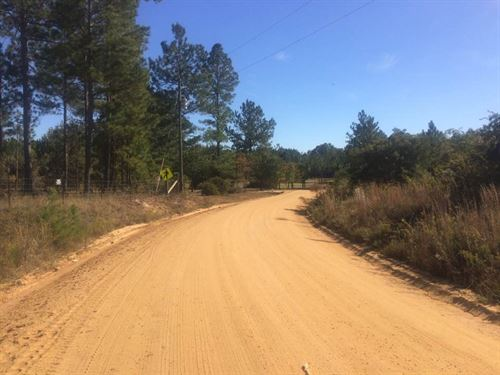 Great Hunting Or Home Site : Swainsboro : Emanuel County : Georgia