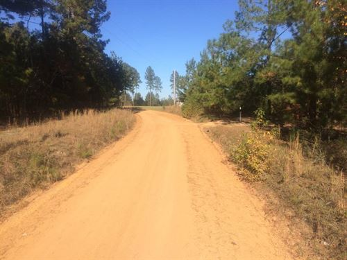20.75 Acres Sam Woods Road : Swainsboro : Emanuel County : Georgia