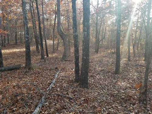 1.3 Acres With Well And Electric : Summersville : Shannon County : Missouri