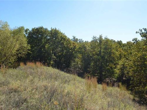 Dream Location 20 Acre Ranch With : Bowie : Montague County : Texas