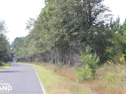 Caton Creek Farms Home Site 2 Acres : Summerville : Berkeley County : South Carolina