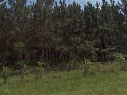 Suwannee County, Fl $12,000 Neg : Live Oak : Suwannee County : Florida