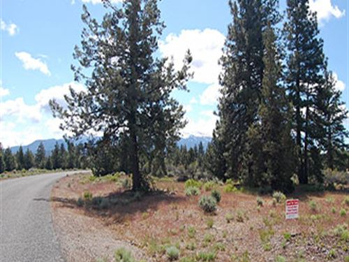 California Lot With Beautiful View : Weed : Siskiyou County : California