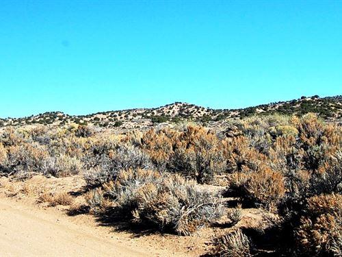 5 Acre Colorado Gem : Bianca : Costilla County : Colorado