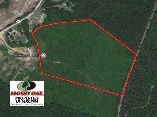22 Acres of Hunting Land For Sale : Chase City : Mecklenburg County : Virginia