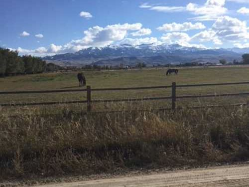 Nine Irrigated Acres of Vacant Lan : Cody : Park County : Wyoming