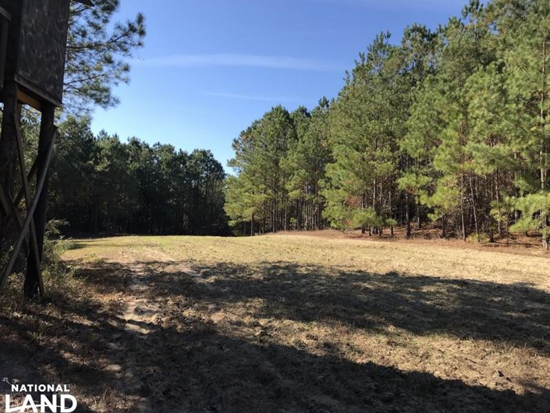South River Duck And Deer Hunting : Land for Sale