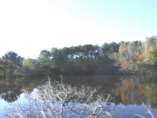 16 Acres W/Home In Prentiss County : New Site : Prentiss County : Mississippi