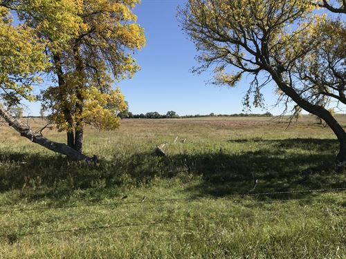 Outstanding Ranch & Farm Property : Mound City : Campbell County : South Dakota