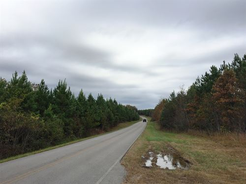 Rocky Top South Tract-Sealed Bid : Hohenwald : Lewis County : Tennessee