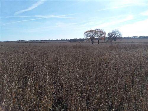 Wheatland, Hickory County, Missour : Wheatland : Hickory County : Missouri