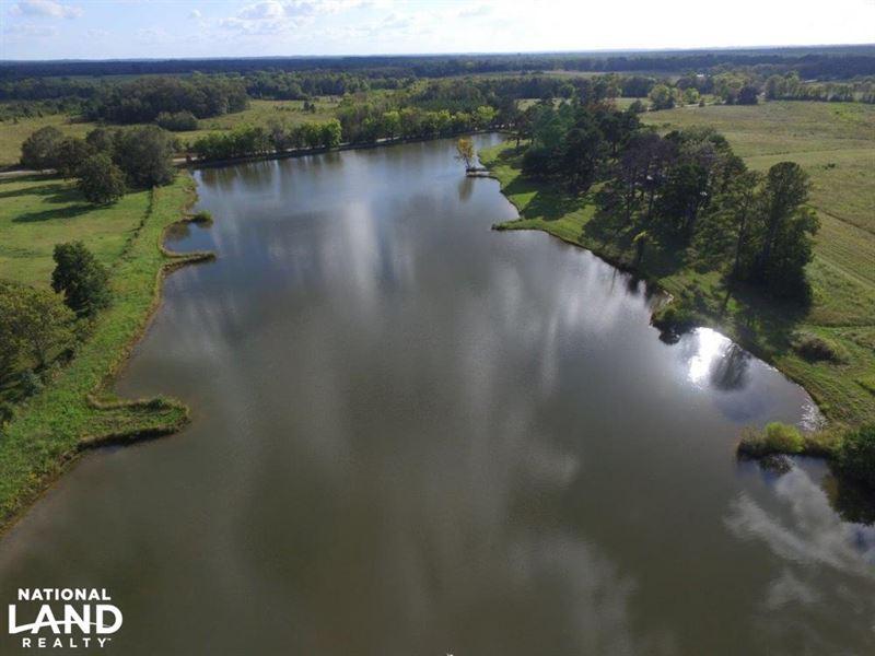 Hayneville Ridge Road Tract : Montgomery : Montgomery County : Alabama