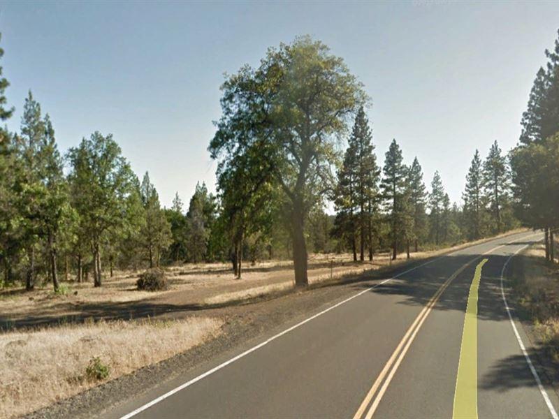 Beautiful Cabin Lot Opportunity : McArthur : Lassen County : California