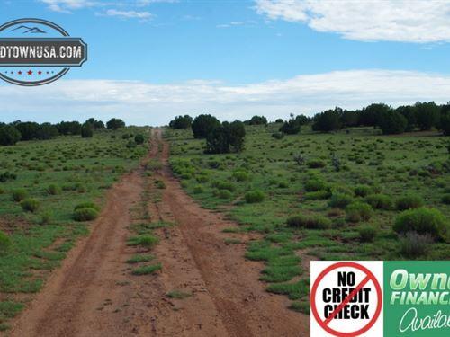 10 Acres Nw Of Seligman, Az : Seligman : Yavapai County : Arizona