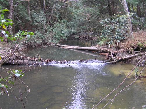 Creek, Next To The Park : Palmer : Grundy County : Tennessee