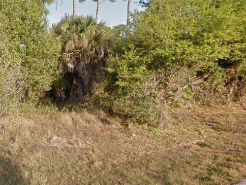 Charlotte County, Fl $30,000 Neg : Port Charlotte : Charlotte County : Florida