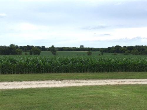 Fertile Farm Land In Watertown, Wi : Watertown : Jefferson County : Wisconsin