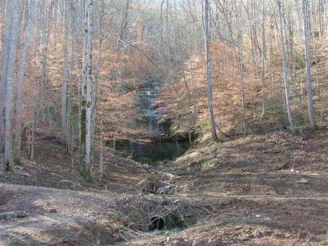 224 Ac of Recreational Heaven : Estill Fork : Jackson County : Alabama
