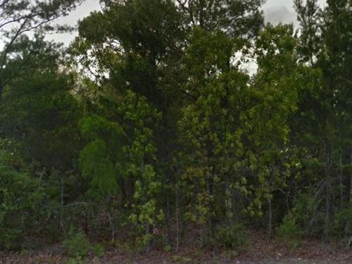 Okaloosa County, Fl $35,000 Neg : Crestview : Okaloosa County : Florida