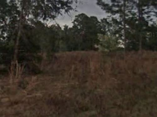 Citrus County, Fl $175,000 Neg : Inverness : Citrus County : Florida
