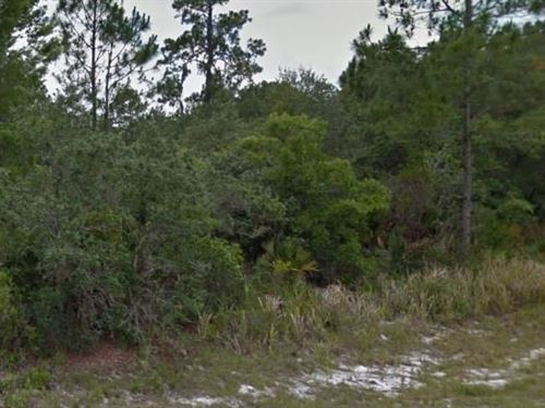 Highlands County, Fl $37,500 Neg : Sebring : Highlands County : Florida