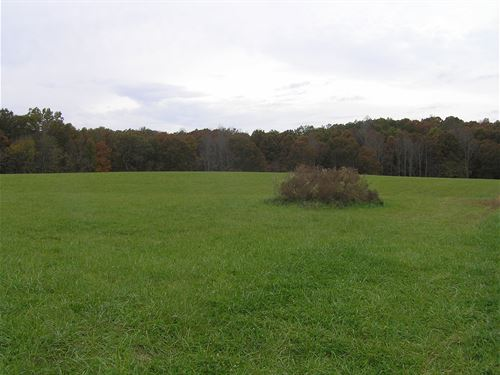 Meadow, Woods, More Acres Available : Palmer : Grundy County : Tennessee
