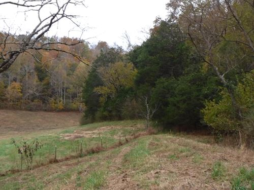 48.11 Ac, Views, Cleared Pasture : Celina : Clay County : Tennessee